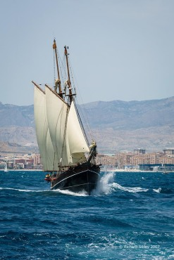 far barcelona. tall ships, tall ships regatta, Alicante,sea fever