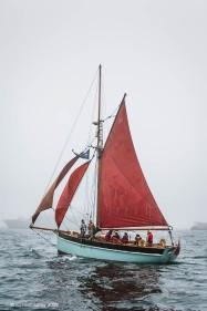 Golden Vanity, 50th Anniversary Tall Ships Race,Torbay 2006
