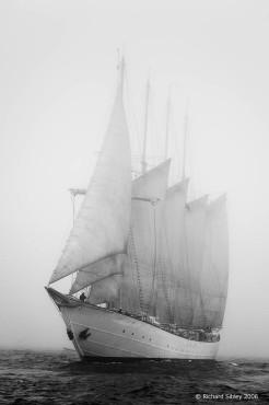 Creoula,50th Anniversary Tall Ships Race,Torbay 2006