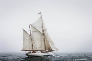 Jens Krogh,50th Anniversary Tall Ships Race,Torbay