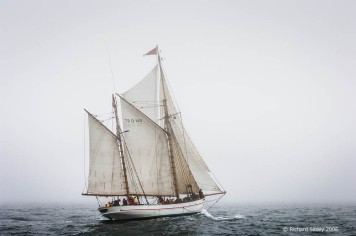 Jens Krogh,50th Anniversary Tall Ships Race,Torbay