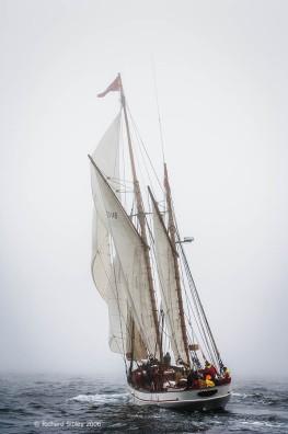 Jens Krogh, 50th Anniversary Tall Ships Race,Torbay