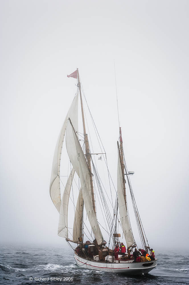 Jens Krogh,50th Anniversary Tall Ships Race