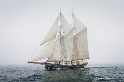 de Gallant,50th Anniversary Tall Ships Race,Torbay 2006