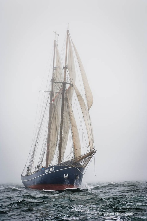 de Gallant, 50th Anniversary Tall Ships Race,Torbay 2006