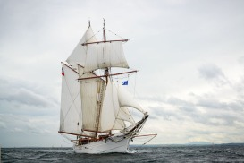 Belle Poule,Belfast tall ships race 2015,photos of tall ships