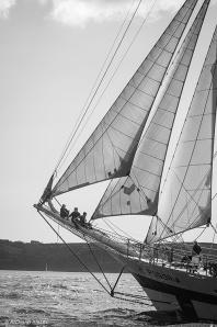 Pogoria,Tall Ships,Funchal 500, Falmouth,