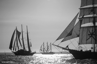 Capitan Miranda,MIR,Shabab Oman,Tall Ships,Funchal 500, Falmouth,