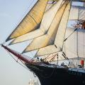 Pogoria,Sedov,Tall Ships,Funchal 500, Falmouth,