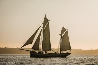 Tecla,Tall Ships,Funchal 500, Falmouth,