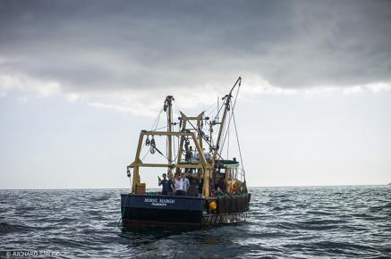 Tall Ships,Funchal 500, Falmouth,
