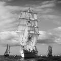Capitan Miranda,Shabab Oman,MIR,Tall Ships,Funchal 500, Falmouth,