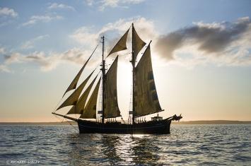 Far Barcelona,Tall Ships,Funchal 500, Falmouth,