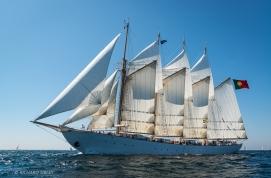 Creoula, Cadiz 2012,White fleet, Portuguese, 4 Masted Schooner