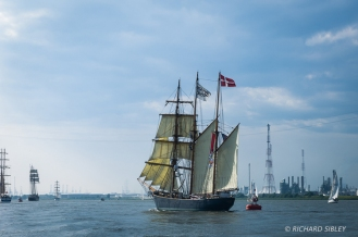 Danish Barquentine LOA. Parade of Sail, Antwerp Tall Ships Race 2010