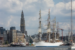 Parade of Sail. Antwerp Tall Ships Race 2010