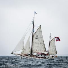 Auno,Tall Ships Race,Lerwick,