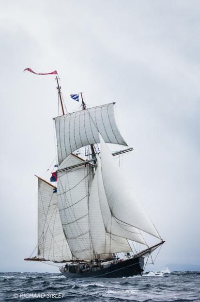 Topsail schooner,Wylde Swan,Lerwick,tall ships