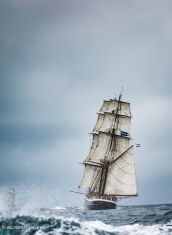 Morgenster,lerwick 2011