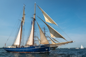 Dutch Schooner de Gallant