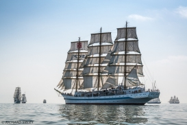 Cuauhtemoc, Wylde Swan, Georg Stage, Russian Full Rigger MIR, Eendracht and Cisne Branco