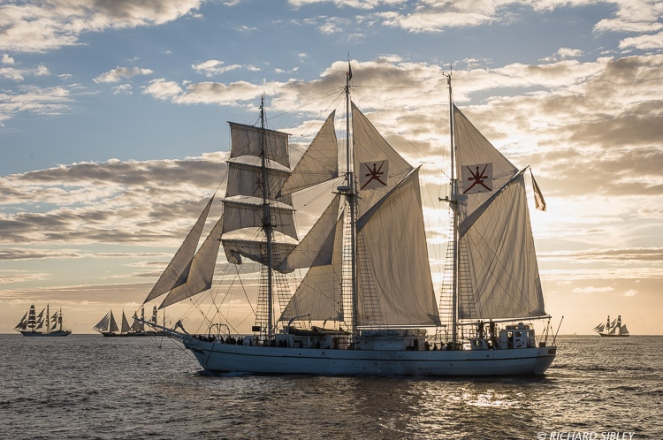 Main vessel, Omani Barquentine, Shabab Oman. On the horizon, Sorlandet, Estelle, Lord Nelson and Morgenster