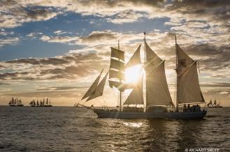 Main vessel, Omani Barquentine, Shabab Oman. On the horizon, Sorlandet, Estelle, Lord Nelson, TS Royalist and Alexander von Humboldt