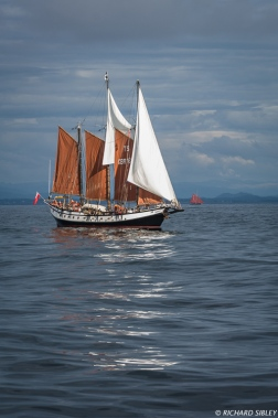 Schooner, Trinovante Great Britain