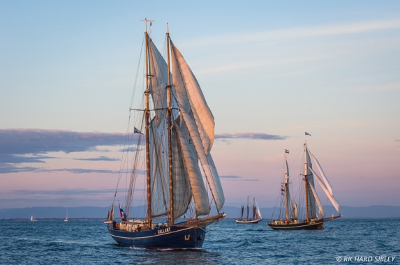 Schooner De Gallant, Trinovante and Lotos