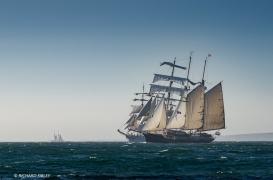 Dutch brigantine Gulden Leeuw. Background vessel Christian Radich
