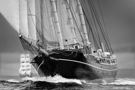 Dutch Schooner, Gulden Leeuw from Norwegian Barque Statsraad Lehmkuhl