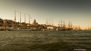 Visible ships from left to right, Santa Maria Manuela, Creoula, Statsraad Lehmkuhl, Georg Stage and Amerigo Vespucci