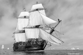"The Swedish East Indiaman ""Göteborg"" in light airs,"