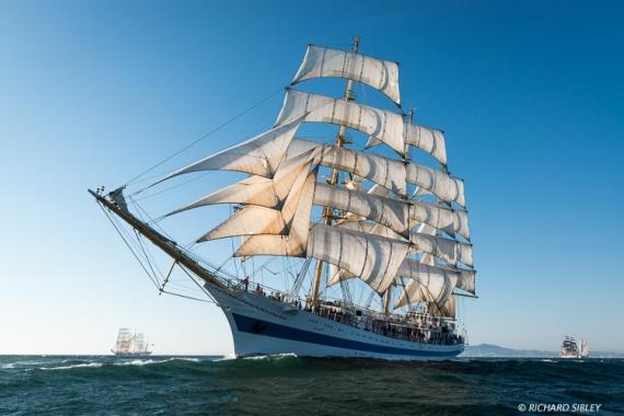 Russian full rigger MIR. Background vessels, Pogoria, America Vespucci and Santa Maria Manuela