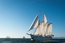 4 Masted Schooner, Santa Maria Manuela, Portugal. Background vessels, Simon Bolivar and Alexander von Humboldt ll