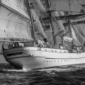 Off Cabo Raso. Lisbon to Cadiz tall ships race2012