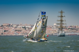 Lisbon parade of sail 2016