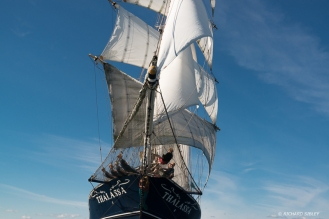 Dutch barquentine Thalassa
