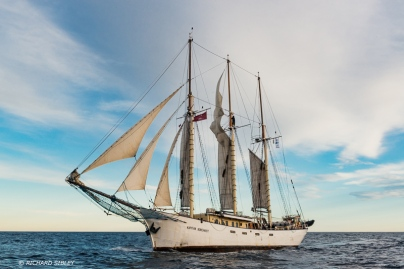 Polish schooner, Kapitan Borchardt