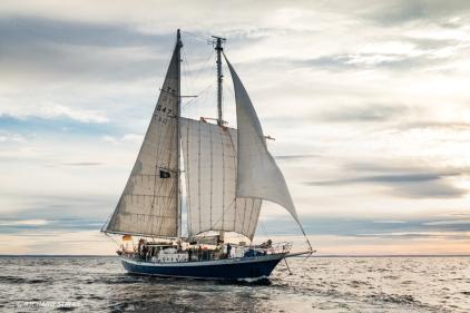 German schooner, Johann Smidt