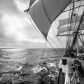 Statsraad Lehmkuhl,Black and White gallery