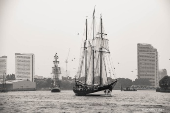 Dutch Schooner Oosterschelde, parading on the Thames