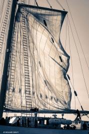 Portuguese 4 masted schooner-Santa Maria Manuela. Greenwich-Sines Tall Ships Race. RDV 2017