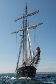 Dutch topsail schooner Wylde Swan preparing for the race