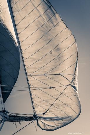 Portuguese 4 masted schooner Santa Maria Manuela