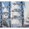 Liberty Tall Ships Regatta2019