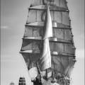 Sunderland tall ships race2018